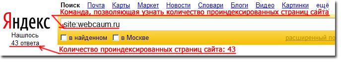 Команда, позволяющая узнать количество проиндексированных страниц сайта