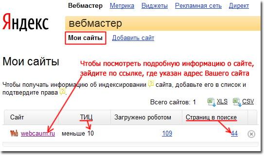 Краткая информация о сайте в сервисе Яндекс.Вебмастер