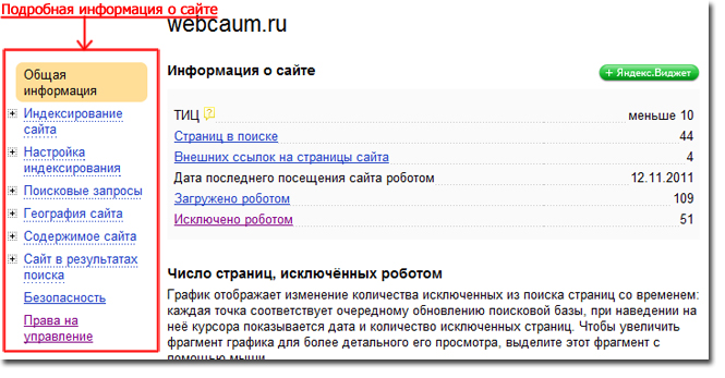 Подробная информация о сайте в сервисе Яндекс.Вебмастер