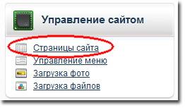 Урок по наполнению сайта, сделанного на okis.ru: заходим в раздел Страницы сайта